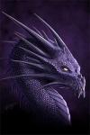 Dragon-03-v