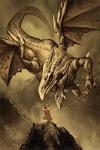 Dragon-14-v