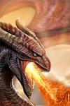 Dragon-16-v
