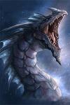 Dragon-17-v