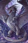 Dragon-27-v